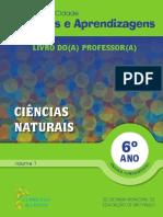 6 Ano CN Professor Vol 1