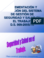 IMPLEMENTACION DS 009.ppt