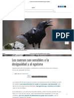 Los Cuervos Son Sensibles a La Desigualdad y Al Egoísmo - Ecoosfera