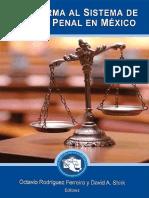 El nuevo sistema de justicia penal acusatorio en México