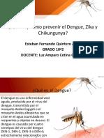 Qué es y como prevenir el Dengue, Zika y Chikungunya.pptx
