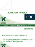 Audiencia Publica Final (1)