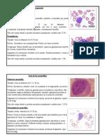 Atlas de Hematología
