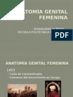 Anatomía Genital Femenina
