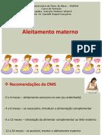 Aula 11 - Aleitamento Materno