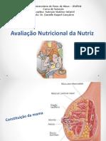 Aula 11 - Avaliação Nutricioal Da Nutriz