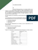 Características y Volumen de Biogás