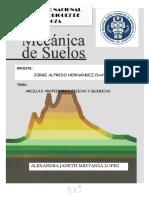 Informe Arcillas , SUELOS I