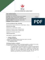 Formato de Laboratorio 6 de Física I