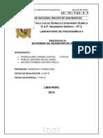Informe de Adsorcion de Solutos