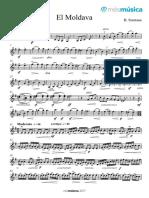 El Moldava Violin 2