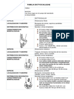 Familia Dictyocaulidaey Orden Spirurida