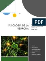 Fisiologia de La Neurona