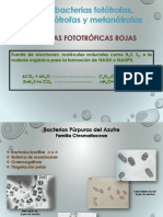 1_PROTEOBACTERIAS_BACTERIAS_FOTOTROFAS.pdf