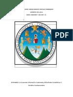 LA ECONOMIA INFORMAL EN GUATEMALA, DIFICULTADES ESTADISTICAS Y DESAFIOS FUNDAMENTALES