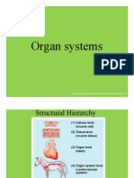 Organ Systems SLIDESHOW