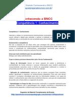 Conhecendo a BNCC - Competência 1