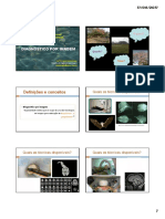 Diagnostico_por_imagem_-__aula_1_parte_1.ppt__Modo_de_Compatibilidade_.pdf