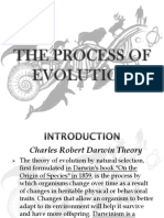 THE PROCESS OF EVOLUTION.pptx