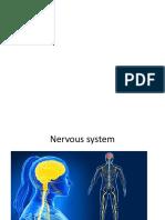 neuron.pptx