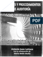 Resumen_Lattuca_AUDITORIA