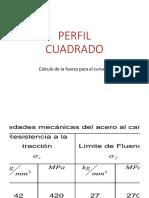 PERFIL-WPS Office.pptx