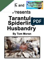Tarantula Spiderling Care Guide