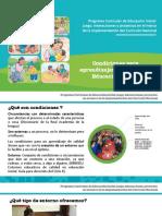 Condiciones Para Un Aprendizaje Del Niño
