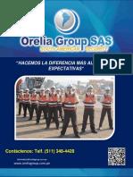 Orelia Seguridad(1)