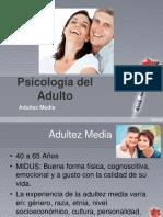 Sesion 2 2019 Psicologia Del Adulto