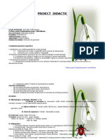 20 Proiect Didactic Matematica