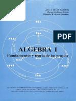 ACCEFVN-AC-spa-2005-Algebra I fundamentos y teoría de los grupos ..pdf