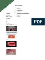 Caracteristicas Normales y Patologicas