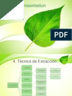 Empresa _ Minera