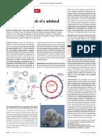 Minimal Synthetic Genome