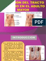 -INFECCIÓN-URINARIA- EN EL ADULTO MAYOR.pptx