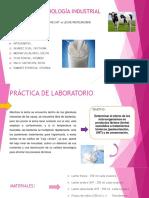 MICROBIOLOGÍA INDUSTRIAL PPT.pptx