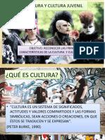Cultura y Cultura Juvenil