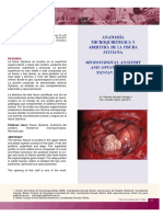 Valle Silviano PDF
