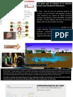Diapositivas Imapcto Fracking