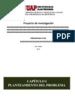 modelo de sustentancion