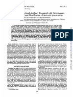 Fluoresent Monoclonal Neisseria Gonorrhea