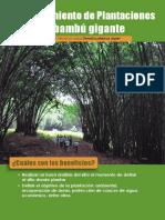 Cartilla-1-Establecimiento-de-Plantaciones-de-Bambú-Gigante