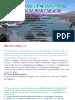 Impacto Ambiental Negativas 8