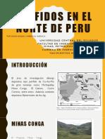 Porfidos en El Norte de Peru