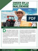 Pioneer en La Agricultura Sinaloense