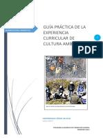 GUÍA-PRÁCTICA-SESIÓN-12.docx