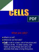 cells-2