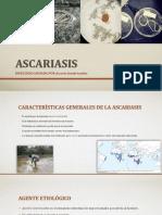 Ascariasis y Enterobiosis Completa