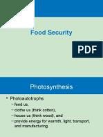 Food Security(1) Copy